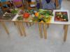 ND - Vrt; 1. razred
